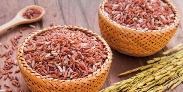 Tiểu đường có được ăn gạo lứt