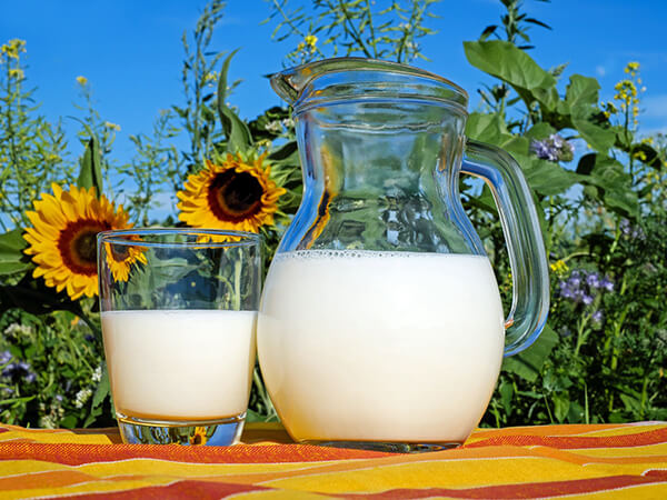Làm thế nào để chọn sữa cho người mắc bệnh tiểu đường