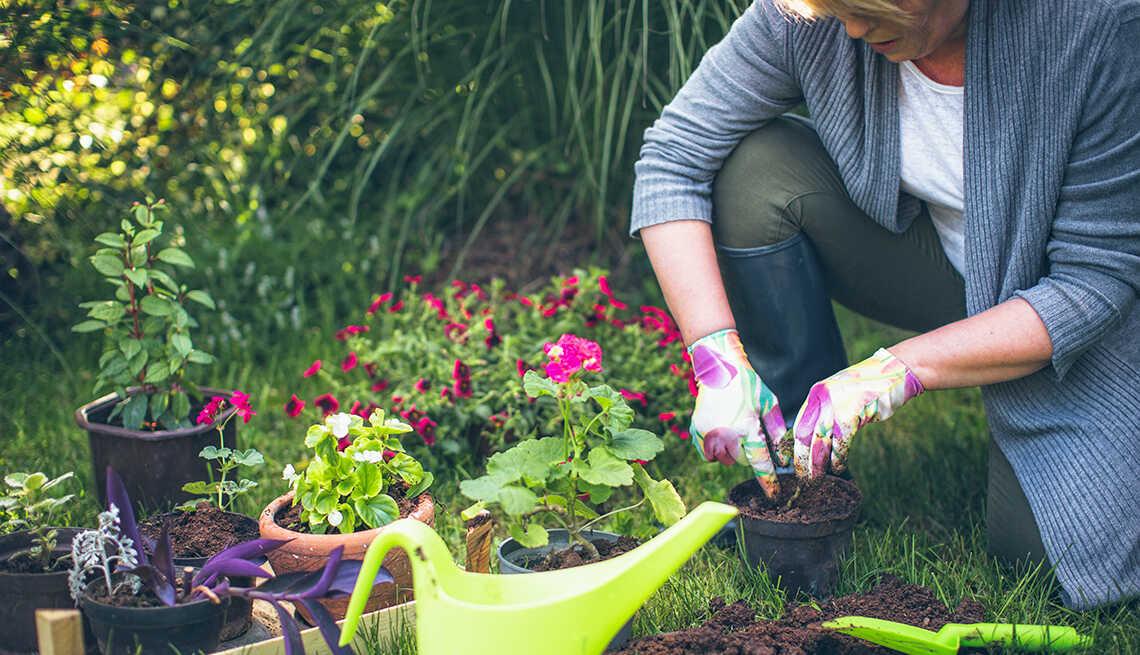Làm vườn là một trong các bài tập nhẹ nhàng nhất
