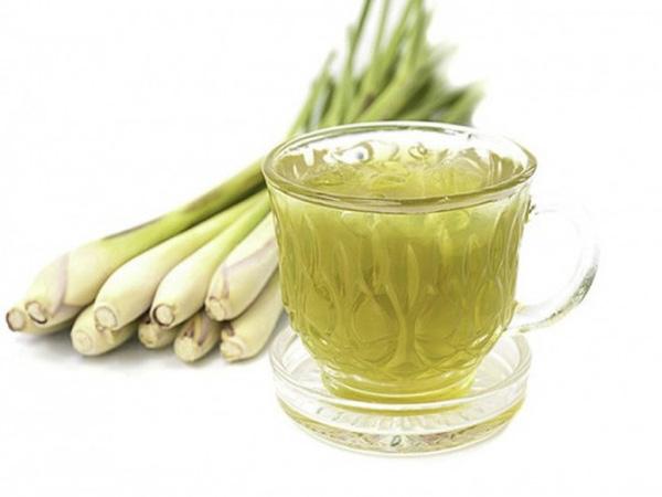 Hỗ trợ điều trị bệnh tiểu đường bằng cây sả với trà sả