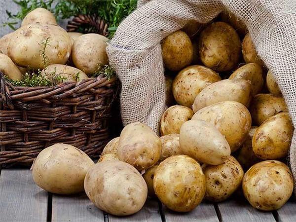 Tiểu đường có ăn được khoai tây không?