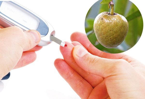 Cách chữa bệnh tiểu đường bằng cây bình bát bạn đừng bỏ qua