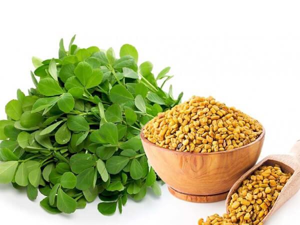 Cỏ cà ri là thực phẩm giúp ổn định đường huyết tốt