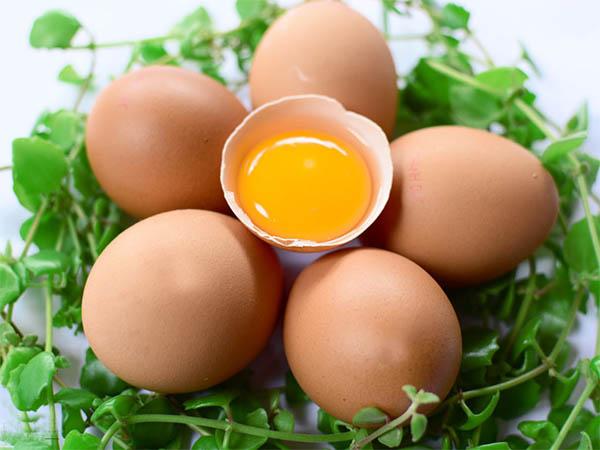 Tiểu đường thai kỳ có được ăn trứng gà?