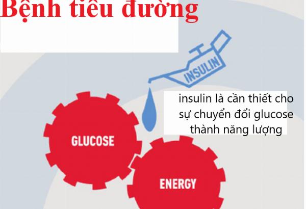 Tiểu đường type mấy thì dùng insulin?