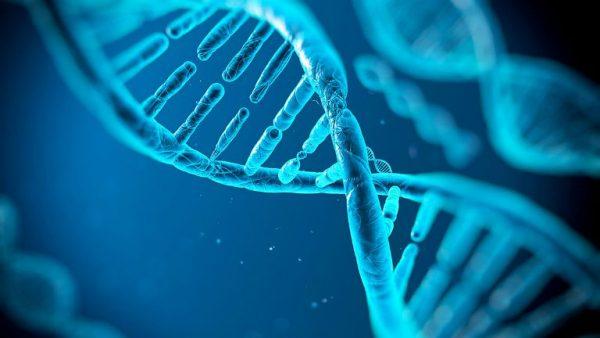 bệnh tiểu đường có di truyền không?